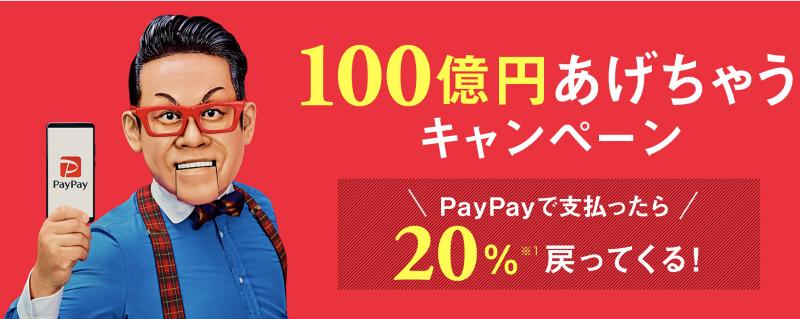 paypay(ペイペイ)のキャンペーンに乗っかり購入した結果・・