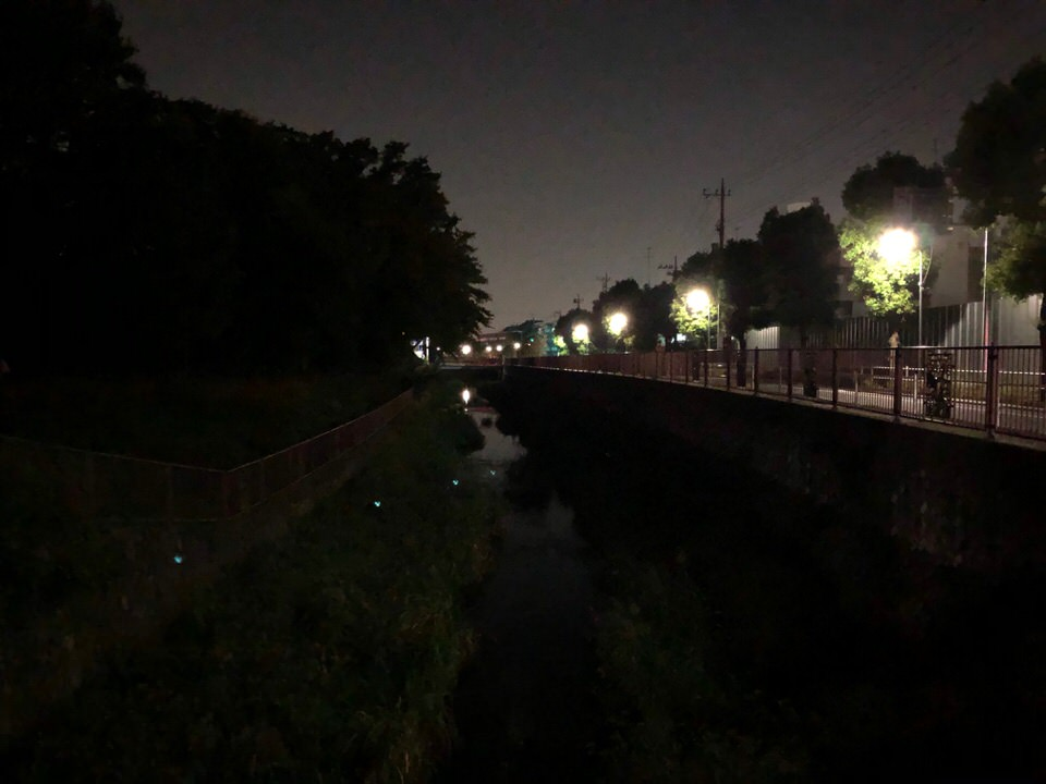 iPhoneXでの夜景