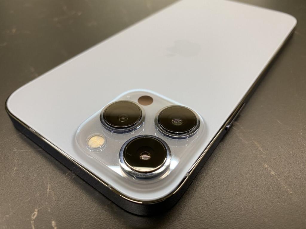 iPhone 13 Proのポートレートモードやマクロモードを旧iPhoneと比較